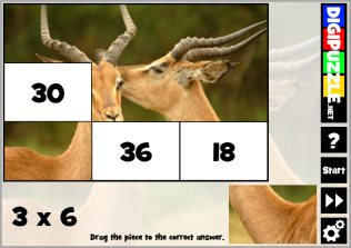 Multiplication Photo Puzzles