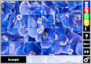 Flower Turn puzzles